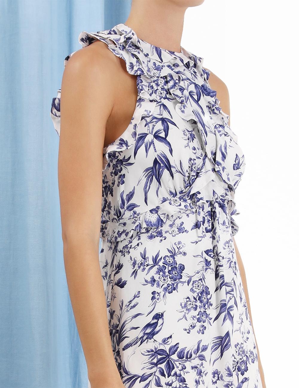 Frilled Picnic Dress