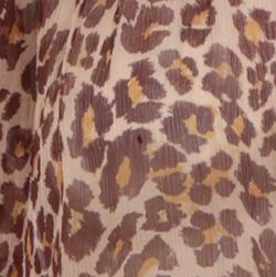 Cameo Leopard