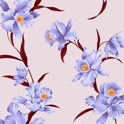 Lilac/Jacaranda Orchid