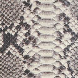 Natural Snake
