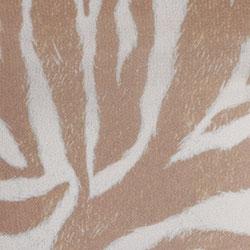Sand Zebra