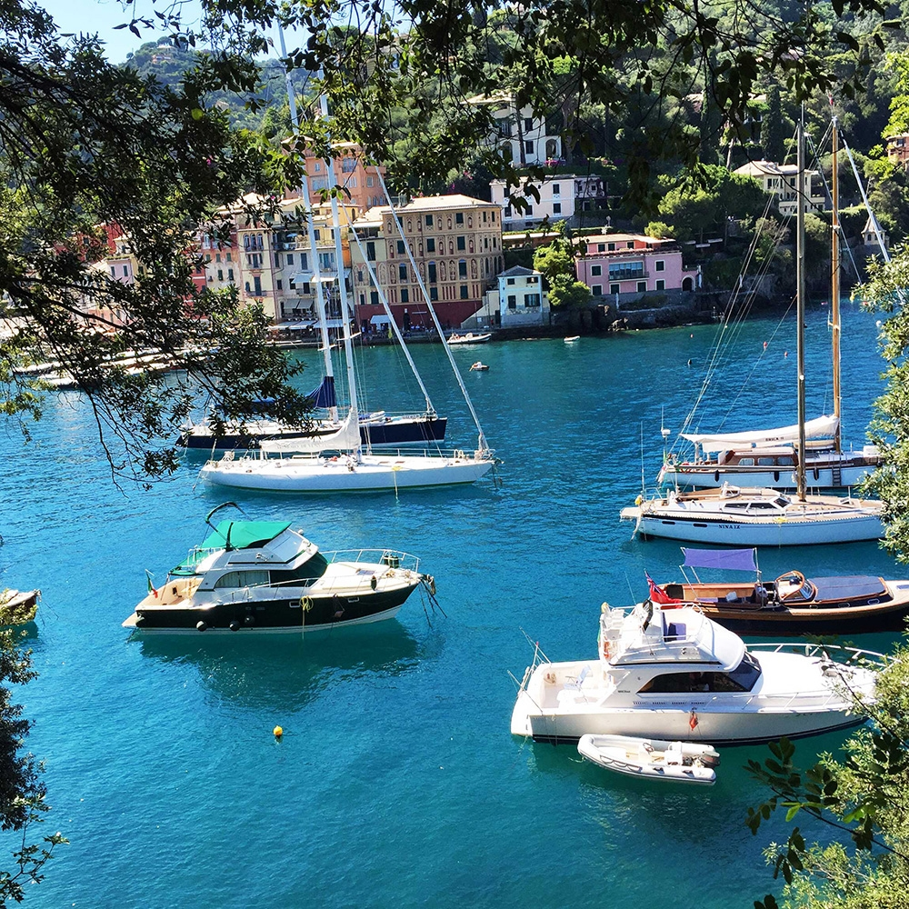 Anchored boats and colourful houses at the port of Portofino