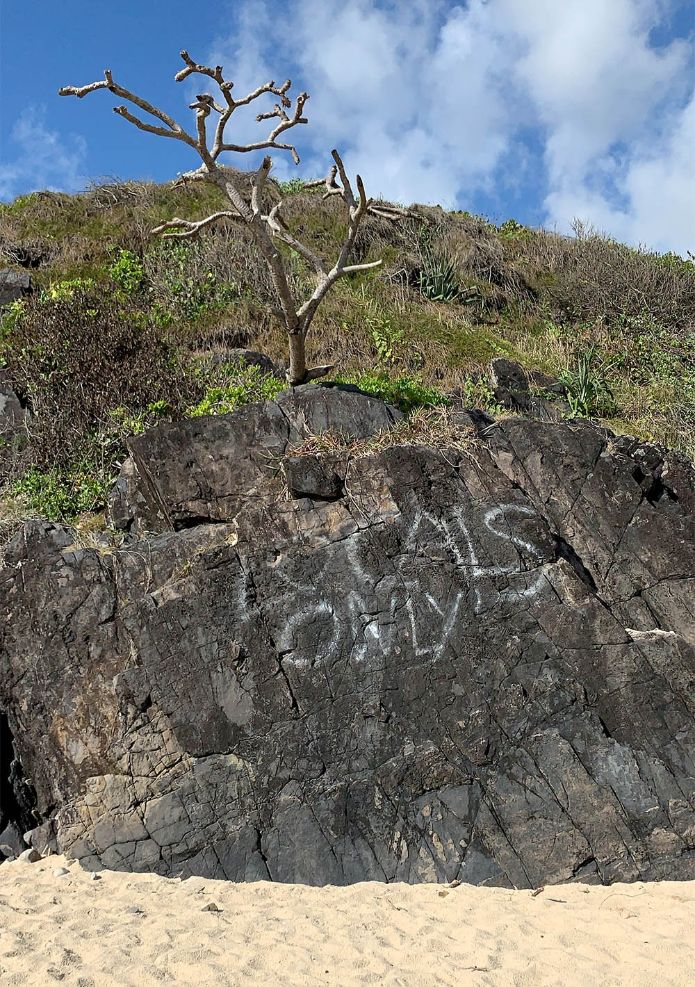 """A rock formation on the sand that has been spray painted with """"Locals Only"""""""