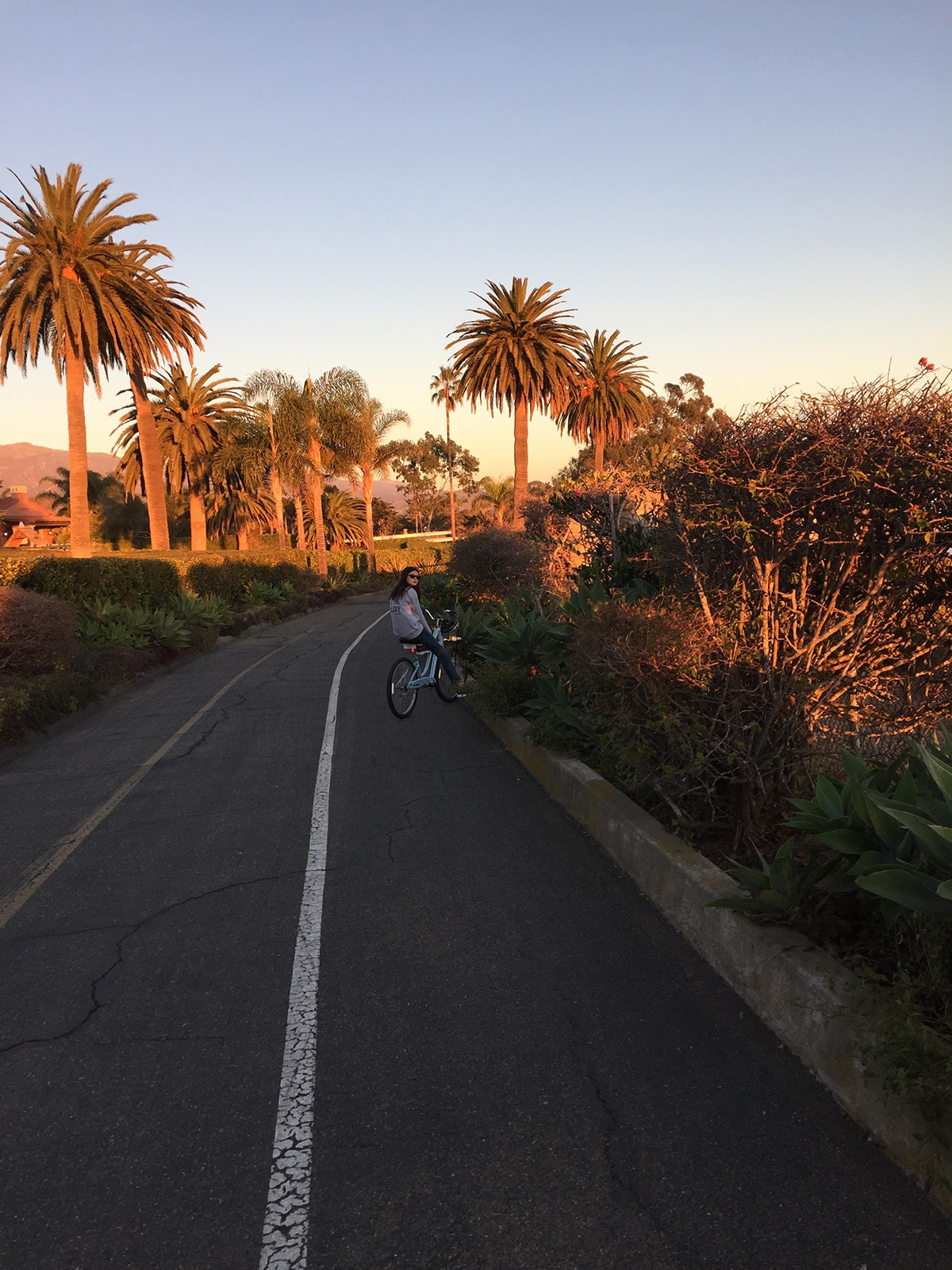 A girl rides her bike on a narrow bitumen road that leads through dense natural plantations at golden hour