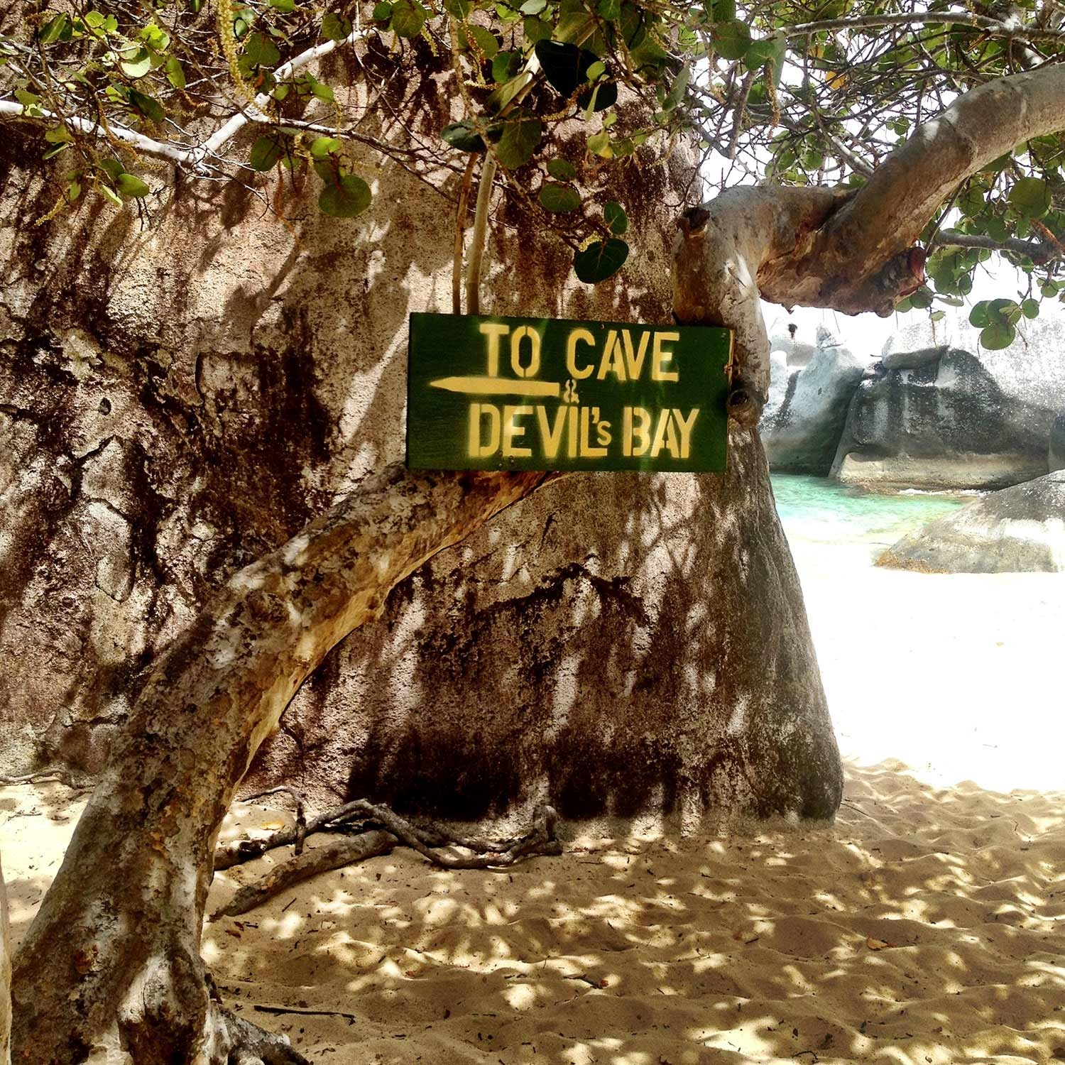 Trees and rocks along the beach with a sign reading 'To Cave and Devils Bay' with an arrow pointing left