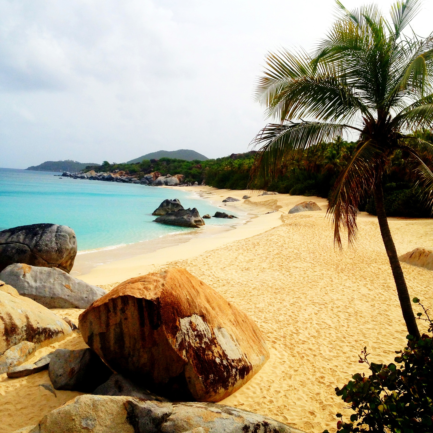 The sand, rocks, trees and sea water that make up the Virgin Gorda coast