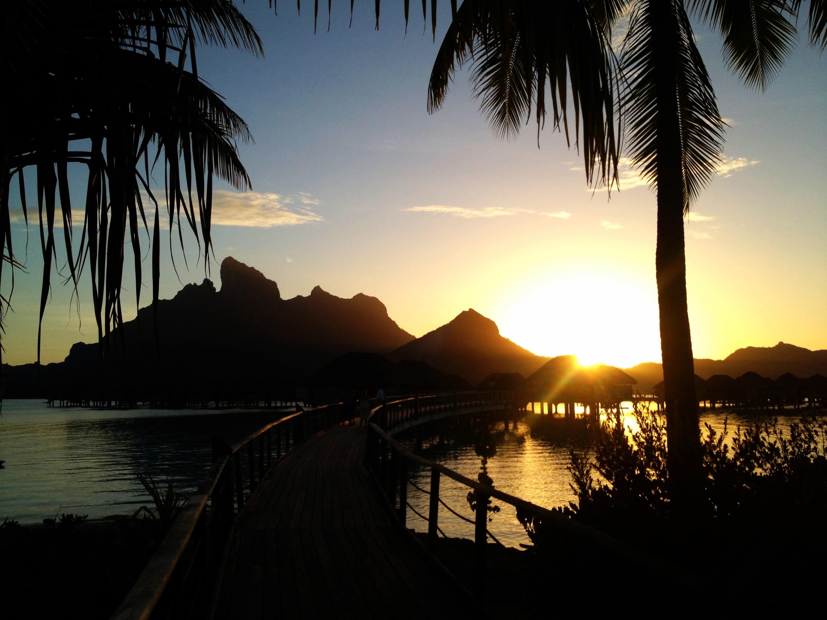Looking through the palm trees at the bright orange sunset bursting through Mount Otemanu
