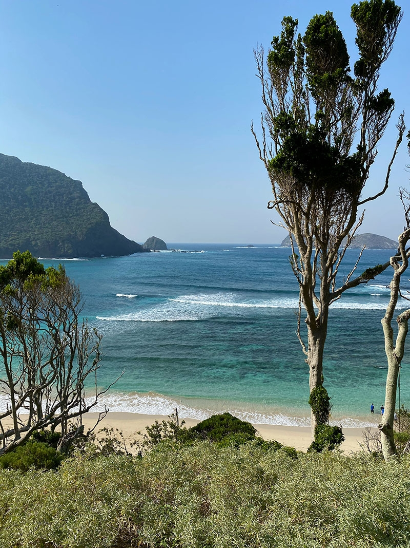 Summer day on Lord Howe Island, the location for our Summer Swim 20 campaign