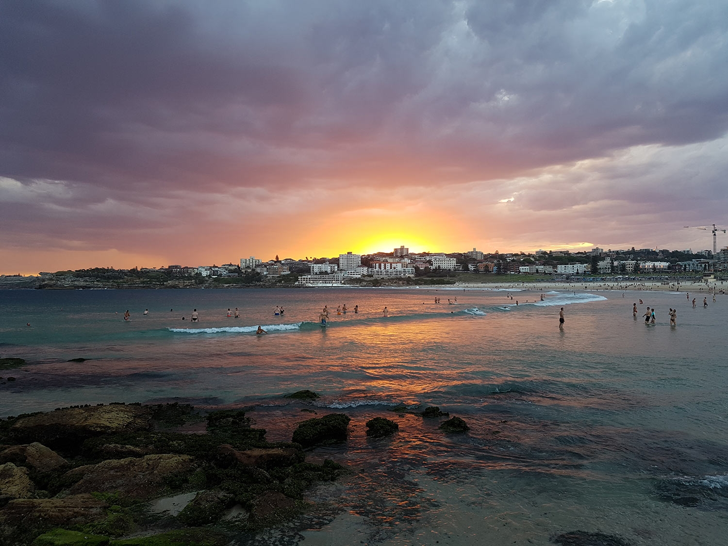 BONDI SUNSET, JANUARY 2017