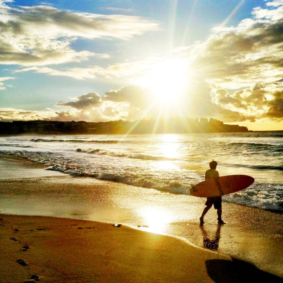 Surfing at sunrise in Bondi