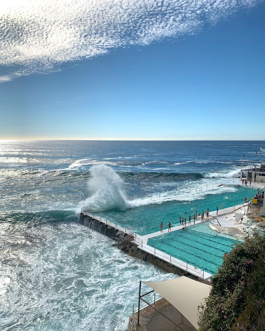 A morning swim at the Bondi Icebergs