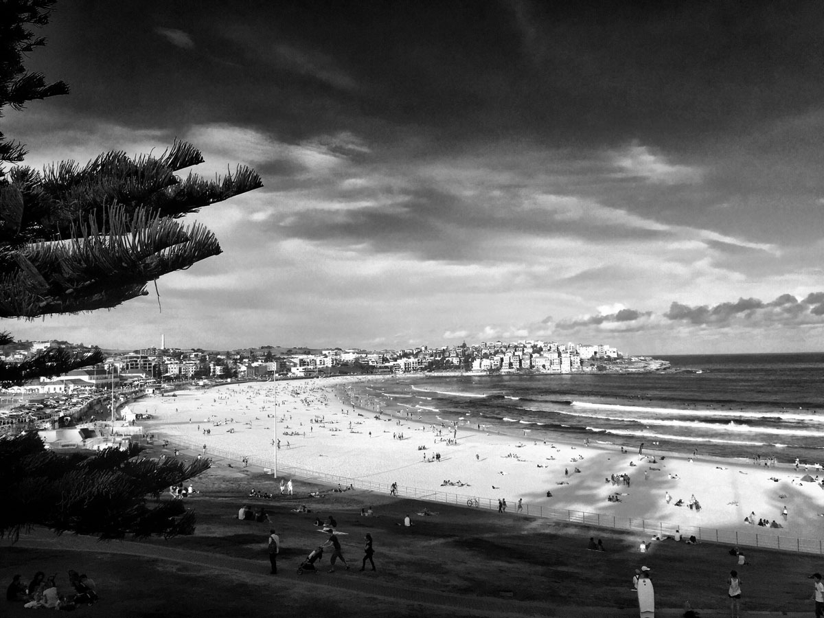 A black and white image of Bondi Beach, February 2016