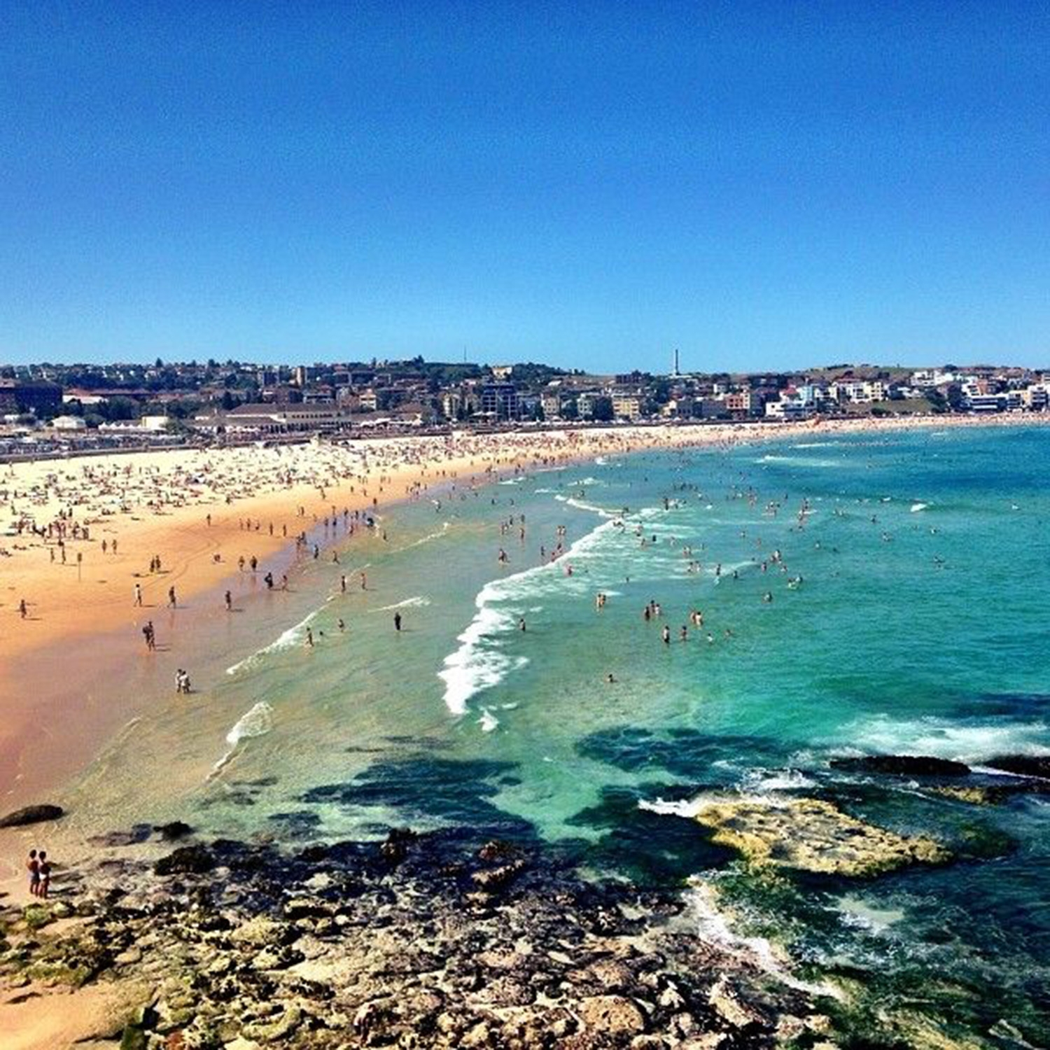 A very busy Bondi Beach on a warm day