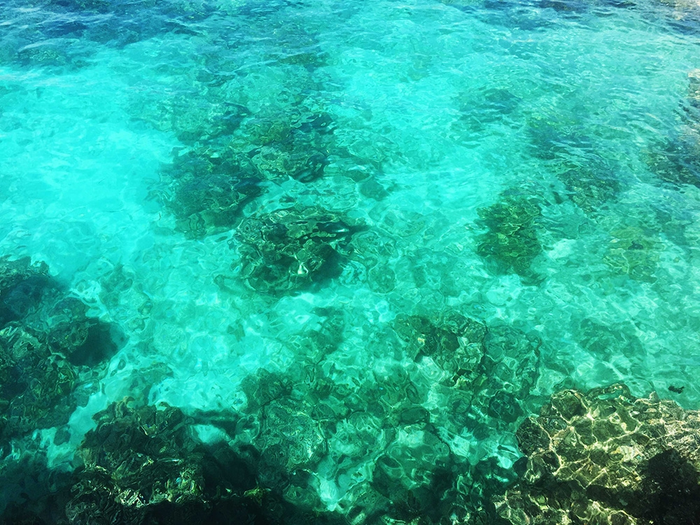 Clear emerald green water