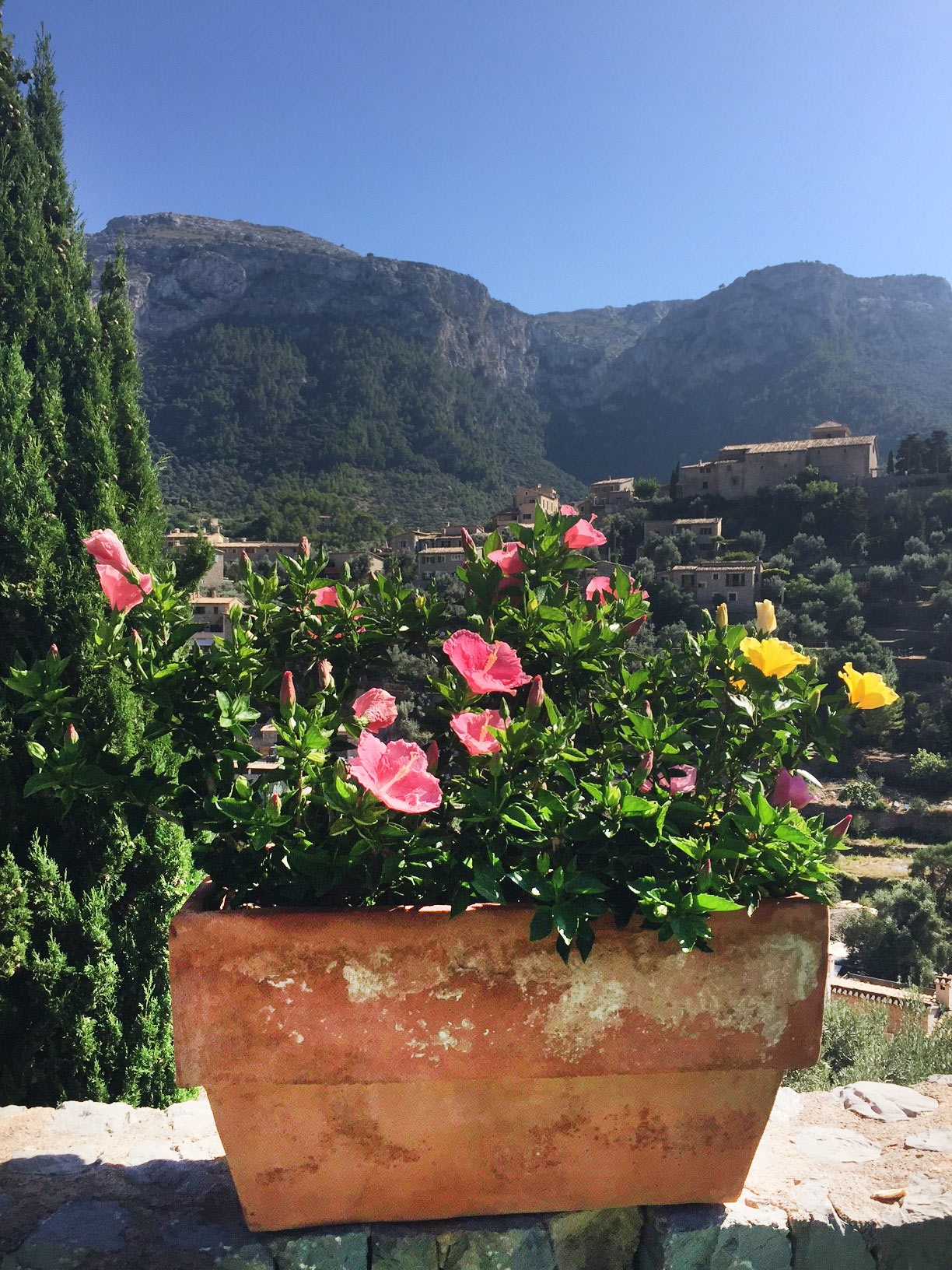 A pot of pink and yellow flowers sits in front of a large mountain dotted with houses