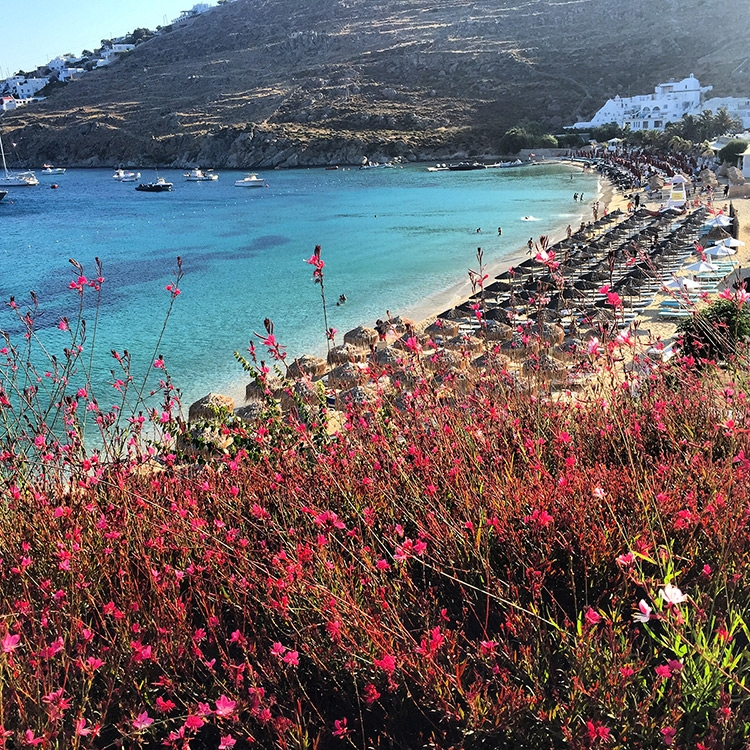 A view of a beach lined with people lounging under sun umbrellas from Mykonos Blu