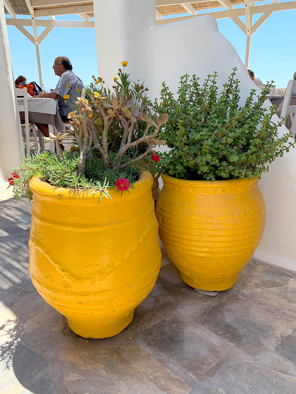 Two large, bright yellow pots house native flora at a local restaurant.