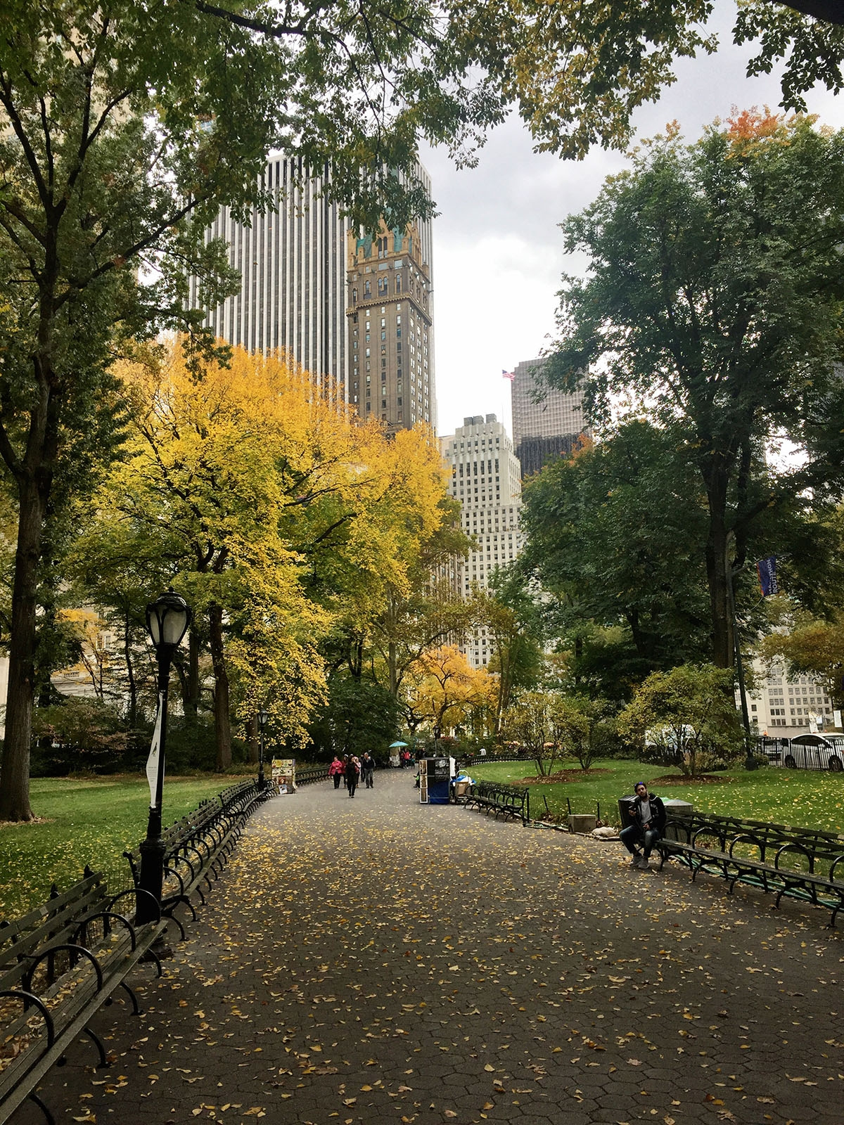 Falling leaves in Central Park