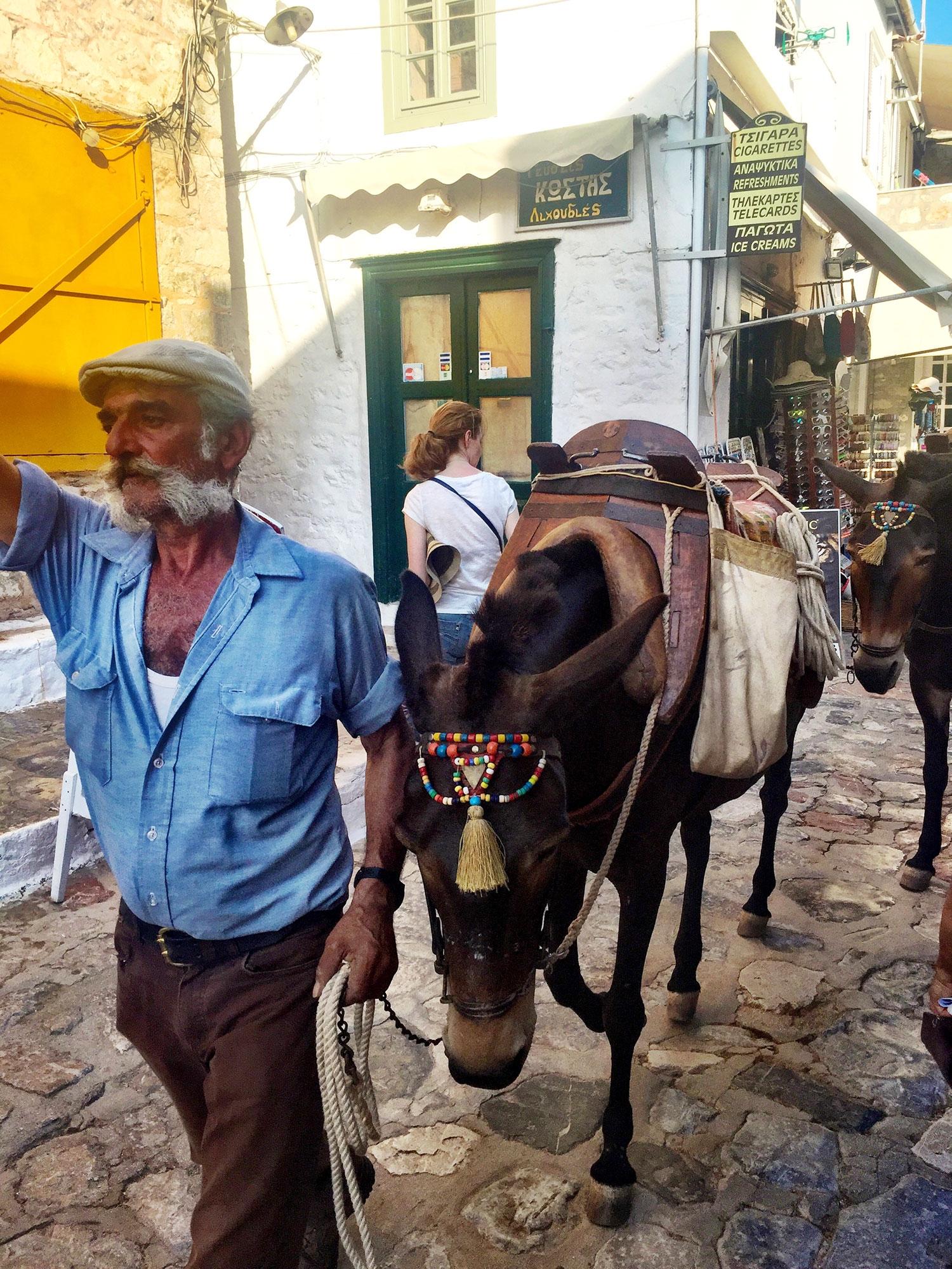 A Greek man walks his pack donkeys through the streets of Hydra