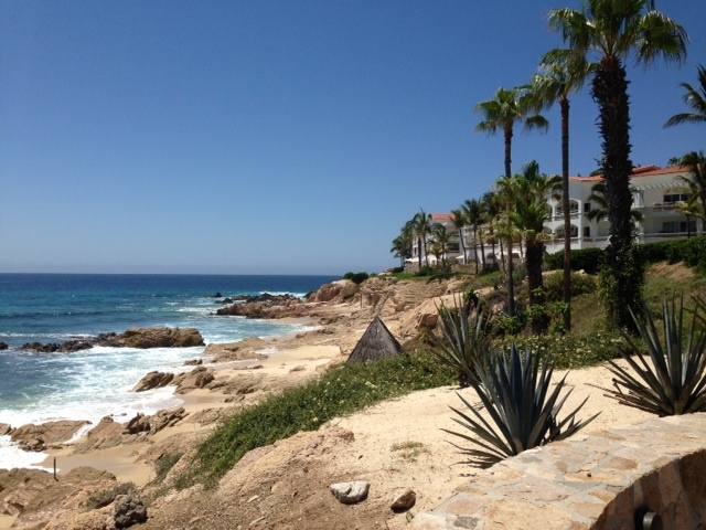 The view from One & Only Palmilla shows the rocky coast dotted with tall trees and bright white buildings