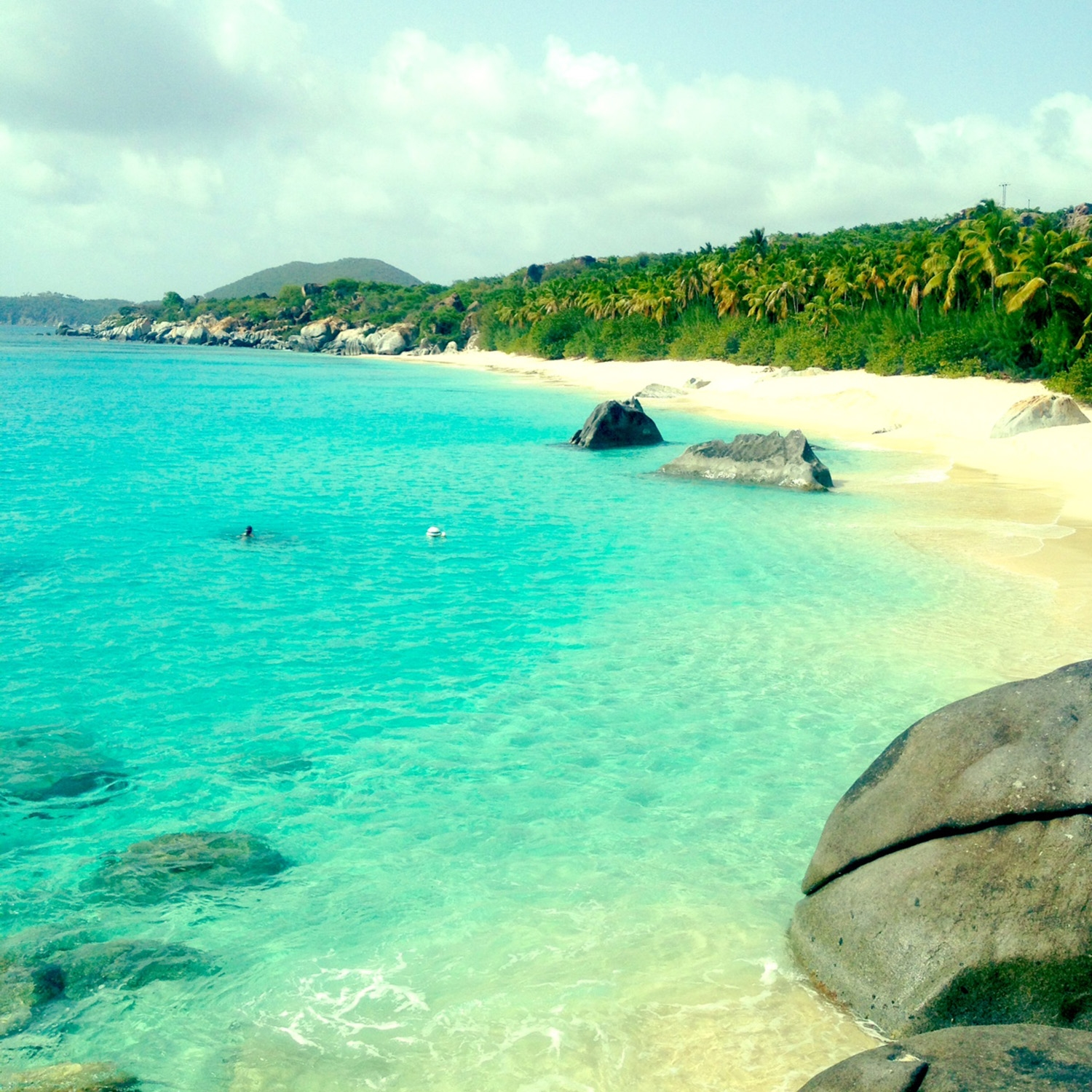 The small sandy beach is met by the dense forest on one side and crystal clear sea water on the other