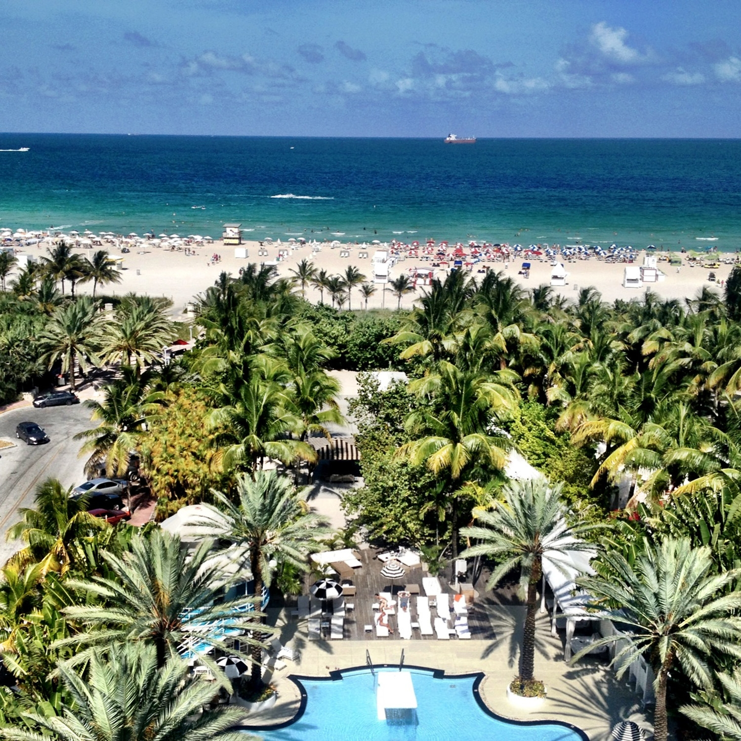 Looking over the palm trees and pool to the white sand and bright sea of South Beach