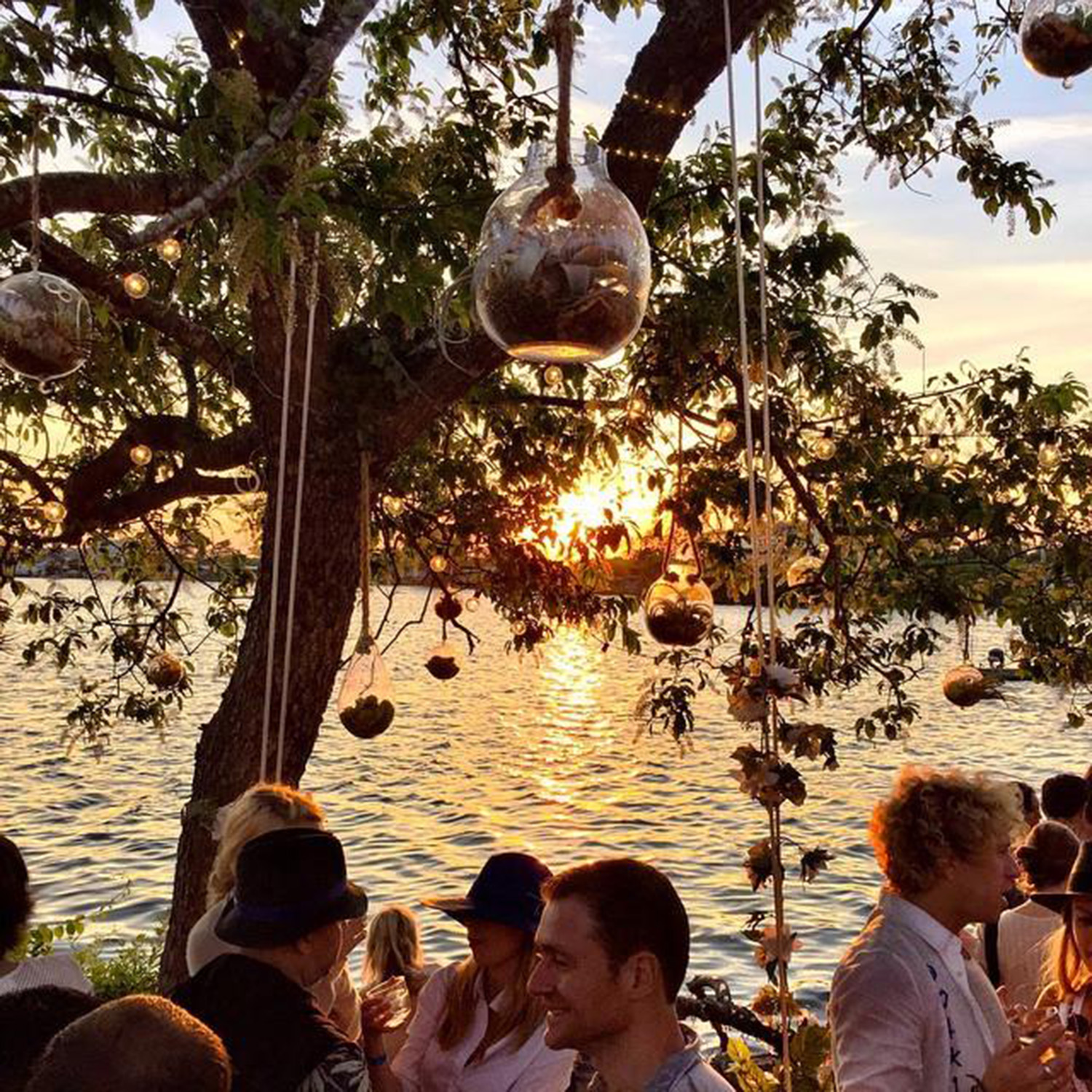The golden sunset reflects off the ocean and through the trees at an outdoor gathering. Fairy lights are wrapped around the tree and lights hang from the branches