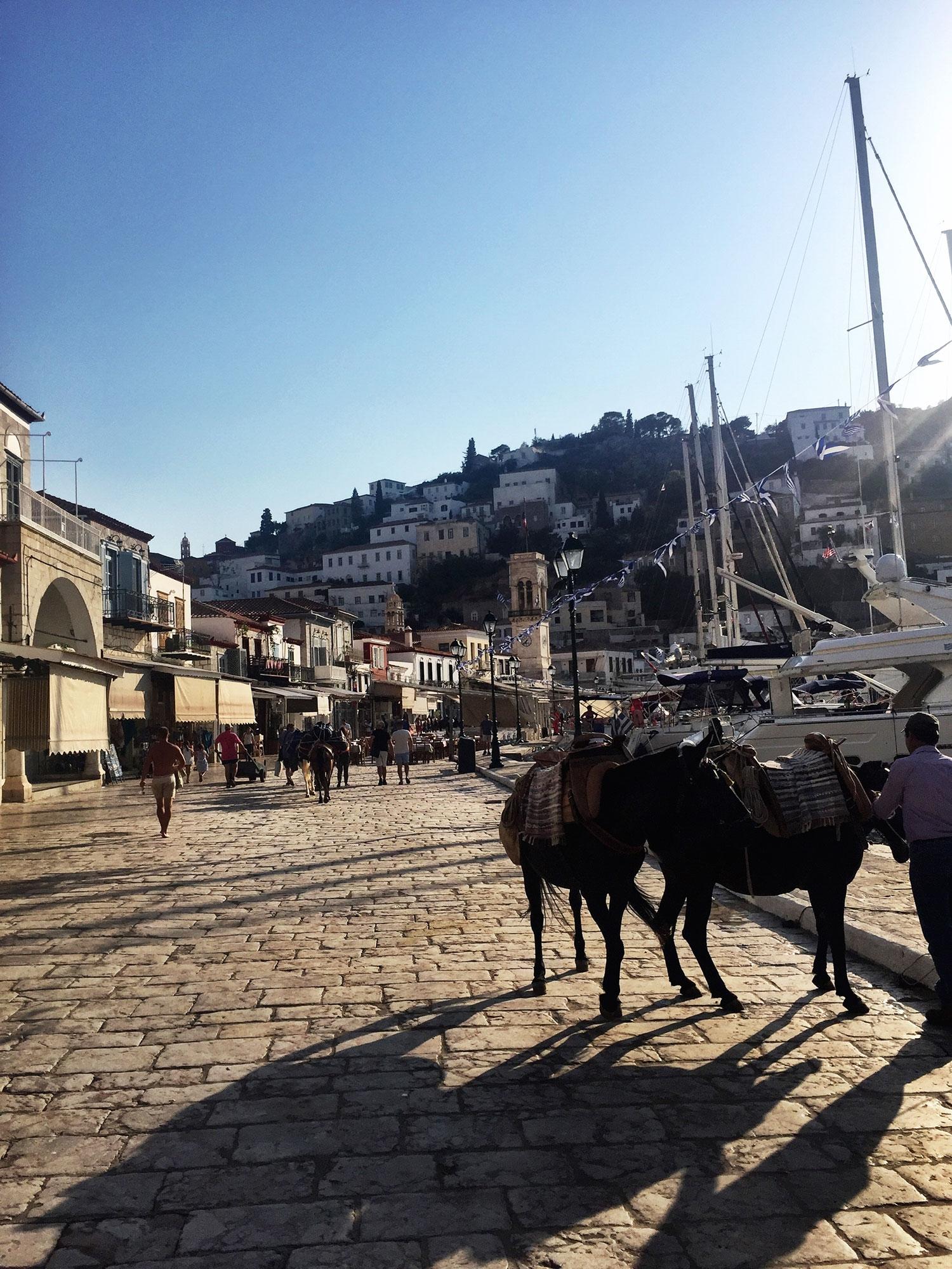 Groups walking along The Port next to docked boats and saddled donkeys