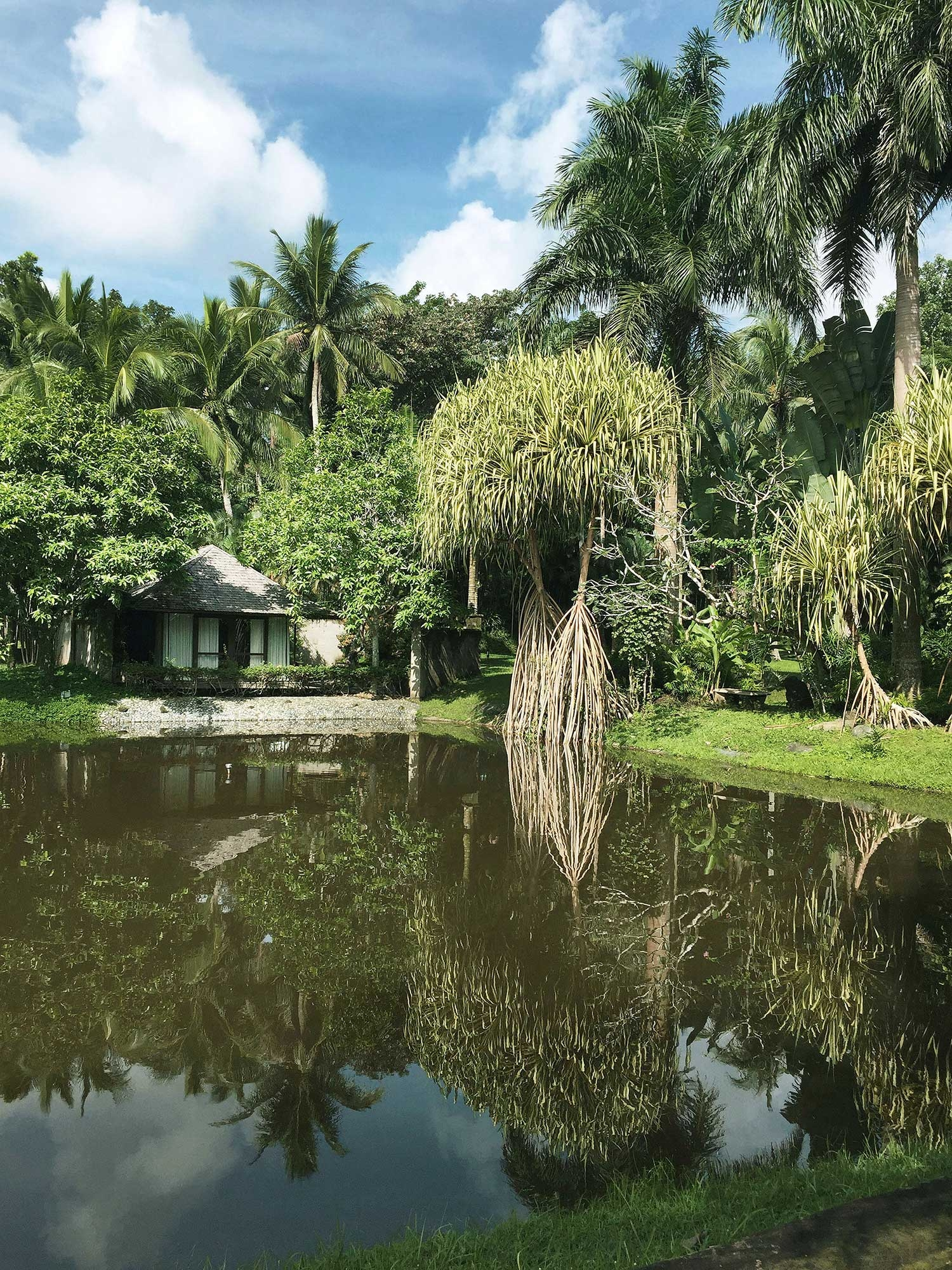 A small lagoon in the garden with a hut and trees by the water's edge