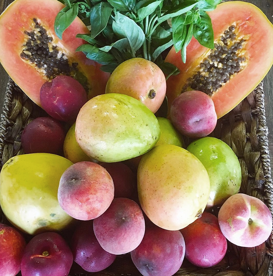 Fresh tropical fruits including mango and papaya are on offer in a fruit basket
