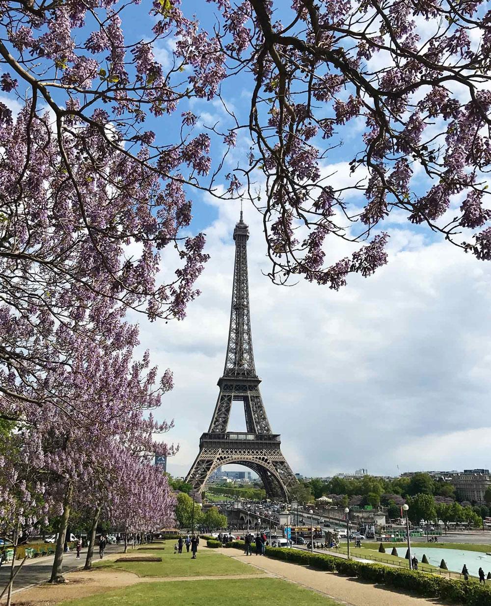 The Eiffel Tower. December 2018