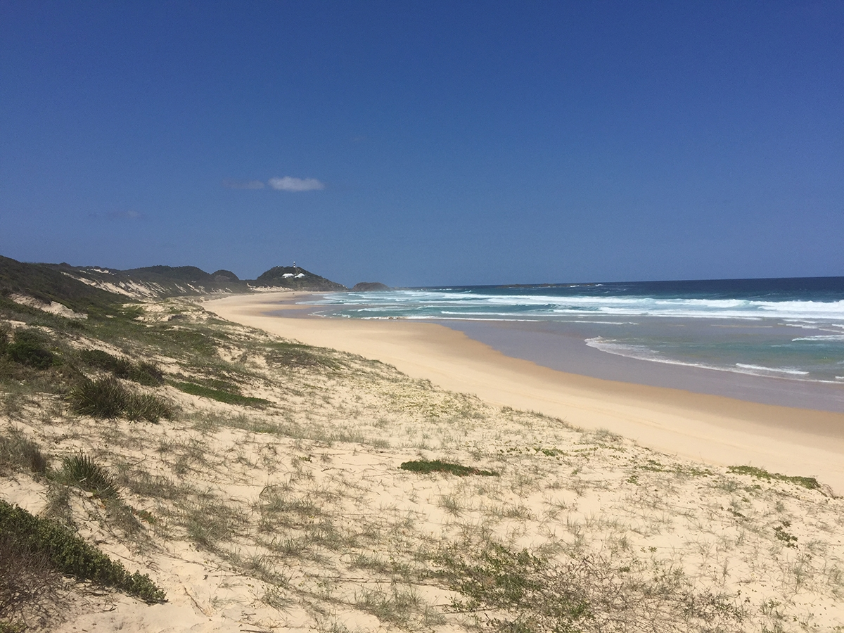 Gold sand and grassy hills at Yagon Beach